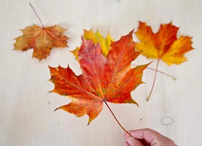 Basteln mit Herbstblättern, Blättern aus Modelliermasse ausstechen, Herbst Schüssel selber machen