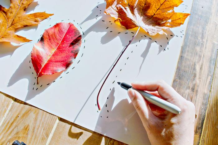 Bunte Herbstblätter auf Papier kleben und mit schwarzem Filzstift nachzeichnen