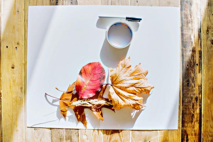 Materialien für Herbstbasteln, bunte Herbstblätter, weißes Papier, Klebeband und Filzstift