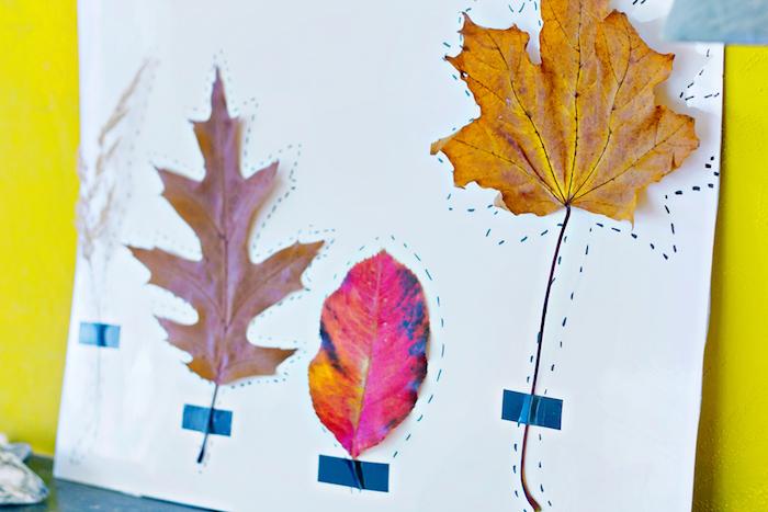Bunte Herbstblätter auf weißes Papier kleben, mit schwarzem Filzstift nachzeichnen