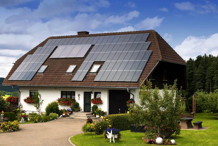 garten mit pflanzen, ein haus mit Photovoltaikanlagen