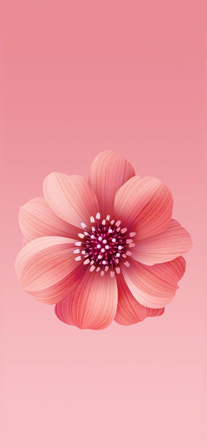 iphone x hintergrund, rosa blume, 3d wallpaper für handy, die besten ideen
