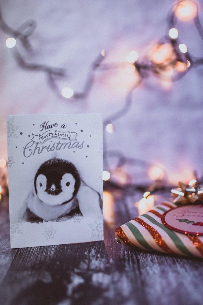 Süße Weihnachtskarte mit Pinguin und Schneeflocken