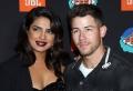 Überraschung! Priyanka Chopra schenkte ihrem Mann Nick Jonas einen Hund