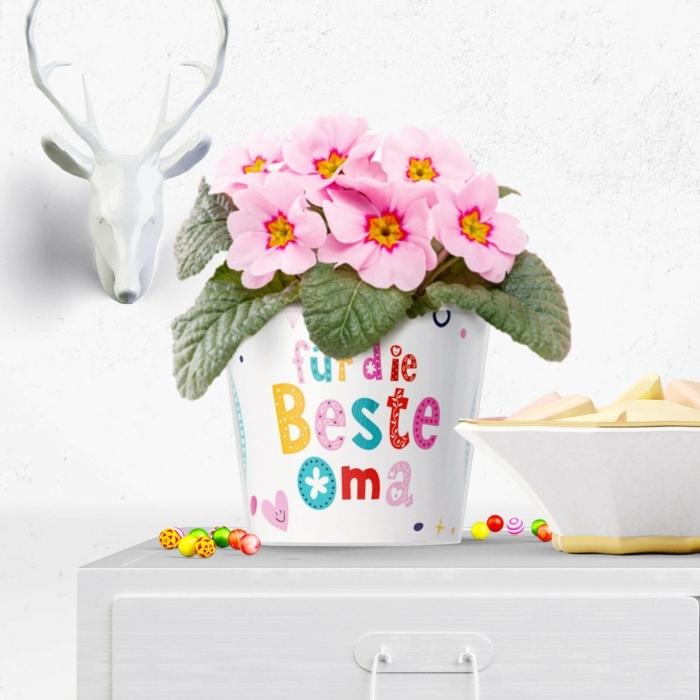 Blumentopf mit Aufschrift und pinke Blumen, Kopf vom Reh im Hintergrund, Äpfel in Schale, Geschenke für die Oma
