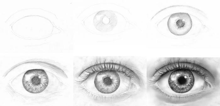 auge zeichnen lernen schritt für schritt anleitung in bildern, realitische zeichnung