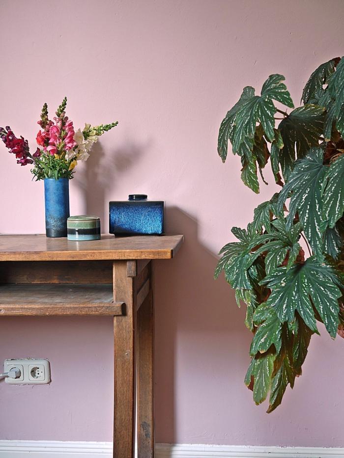 Passende Farbe zu rosa, Wand bemalt in altrosa, dunkelblaue Accessoires auf einem Tisch aus Holz, große grüne Pflanze
