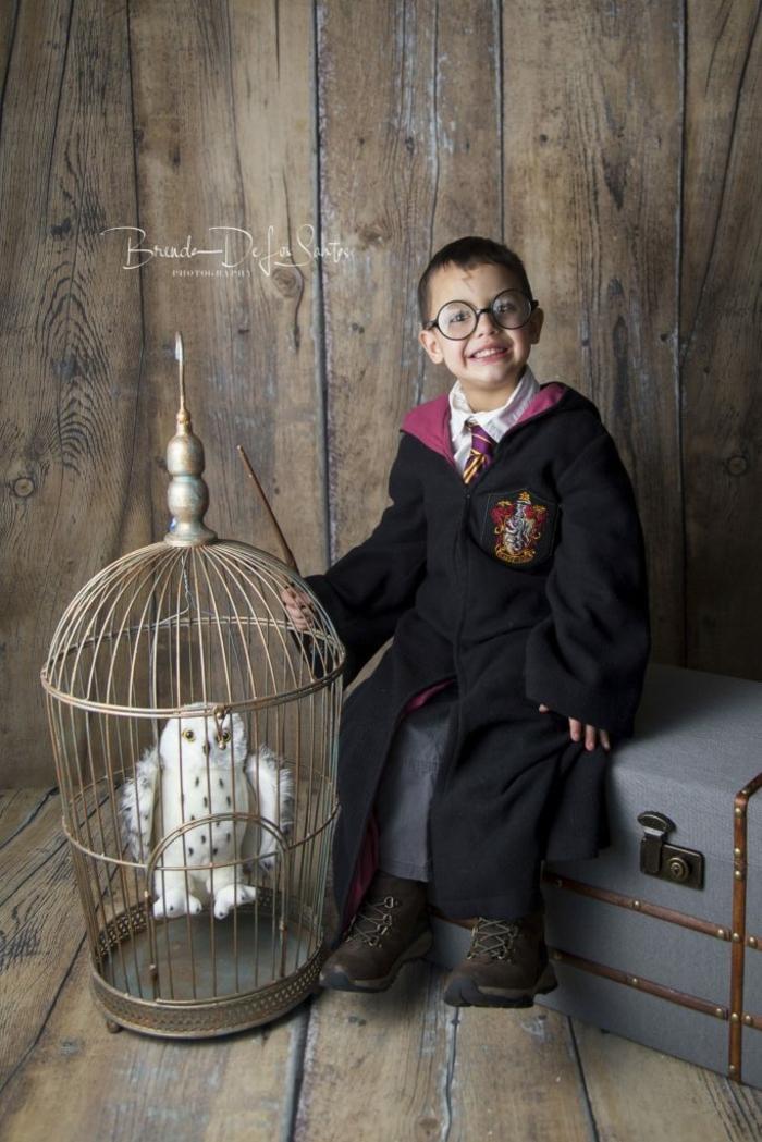 Harry Potter Karnevalskostüm, Gryffindor Mantel und Krawatte, runde Gläser, Stoffeule im Käfig, Faschingskostüme Kinder Jungen
