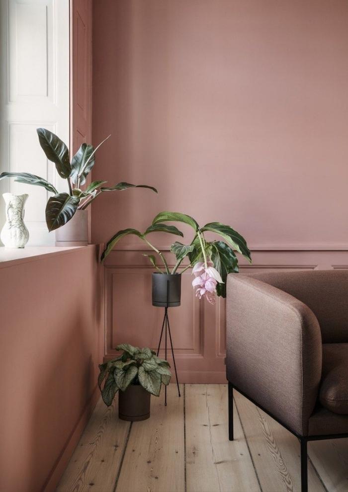 moderne wandfarben ideen, cappuccino wand, boden aus holz, zimmer deko mit pfalnzen