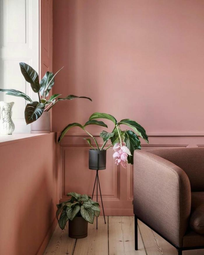Welche Farbe passt zu altrosa, Sessel in brauner Farbe, grüne Blume mit rosa Blüten und grüne Pflanzen