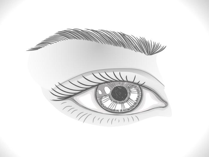 zeichnen für anfänger, bilder zum nachzeichnen, frauenauge schritt für schritt skizzieren