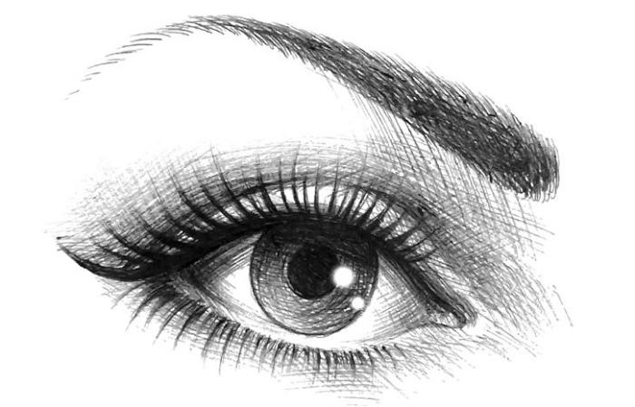 zeichnen für anfänger, frauenauge gezeichnet mit schwarzem bleistift, lange wimpern