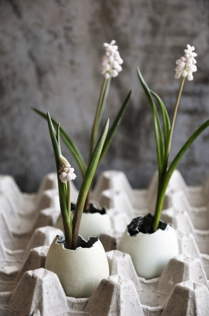Osterdekoration Upcycling Idee für Eierschalen, Osterdeko basteln aus Naturmaterialien, Schalen als Blumentöpfe mit Blumen