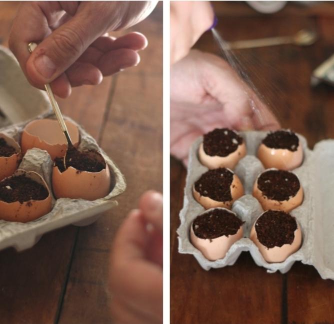 Hand füllt leere Eierschale mit Erde und Samen, DIY Pflanzer aus Schalen vom Ei, Upcycling Idee, Garten Ideen selber machen,
