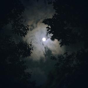 Zielsicher durch die Nacht mit dem richtigen Nachtsichtgerät