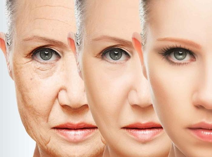 cbd kosmetik, anti aging