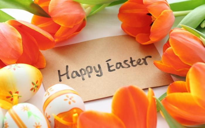 bilder frohe ostern, orangenfarbene tulpen, osterkarte frei, happy easter, frühlingsblumen