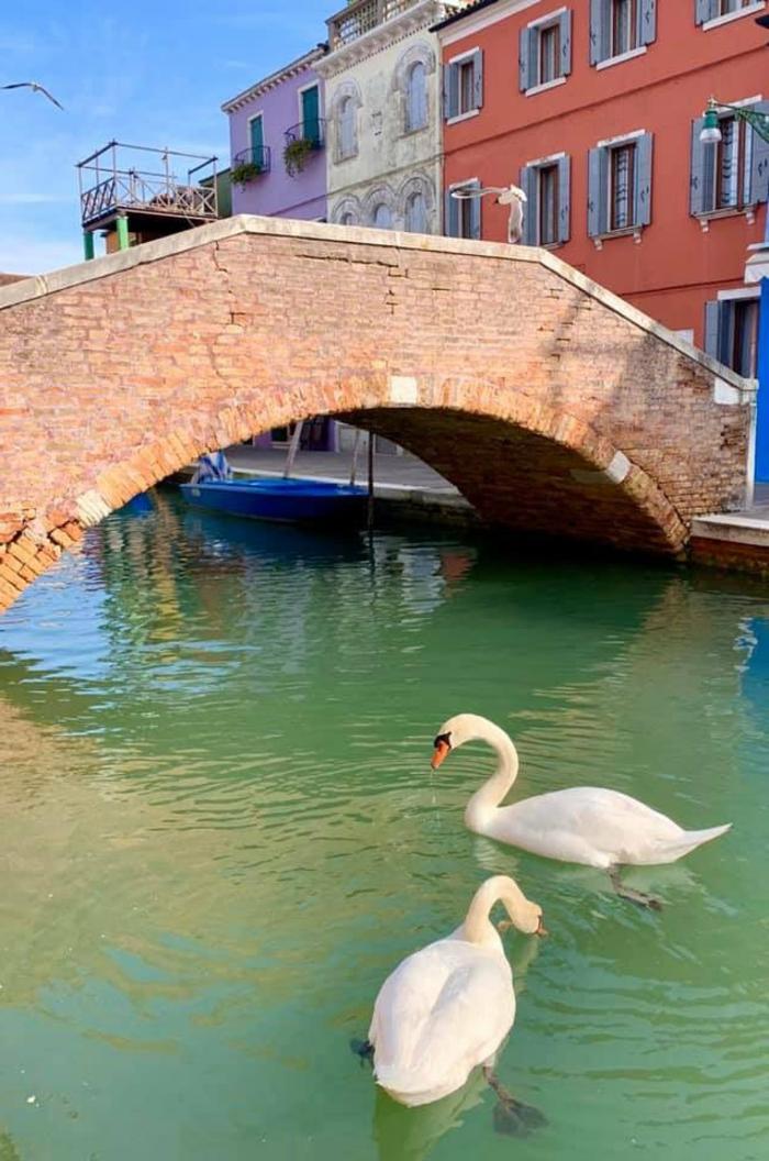Venedig Sauberes Wasser