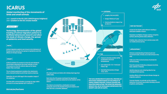start des projekt icarus zur beobachtung von tieren