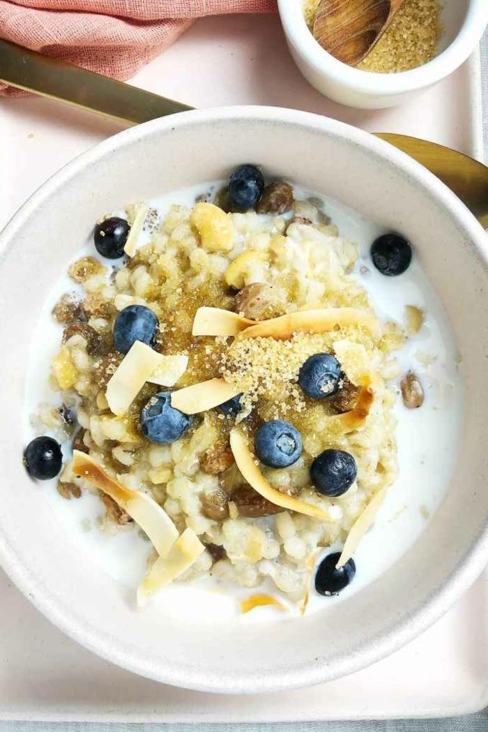 Frühstück Haferbrei mit Gerste Blaubeeren Nüssen und vegane Milch, vegane Rezepte für Anfänger, gesundes und nahrhaftes Essen
