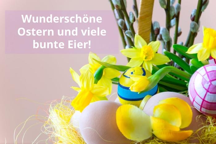 frohe ostern wünsche, oderbilder kostenlos, frische frphlingsblumen, osterwünsche