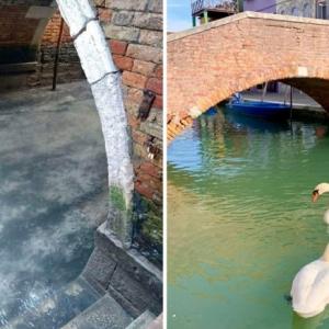 Coronavirus in Venedig: kristallklares Wasser in den Kanälen
