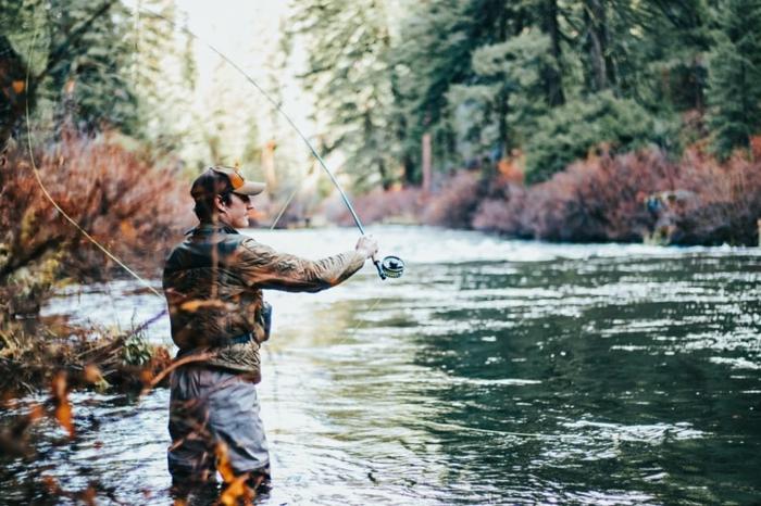 karpfenangeln die besten tipps zum erfolgreichen karpfenfang, karpfen angeln, den bestne platz finden
