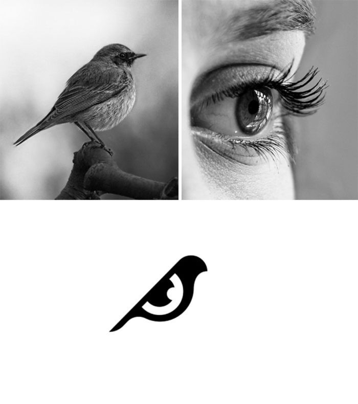 das markenlogo birdeye, bild mit auge einer jungen frau, bild mit einem spatz, designer shibu pg
