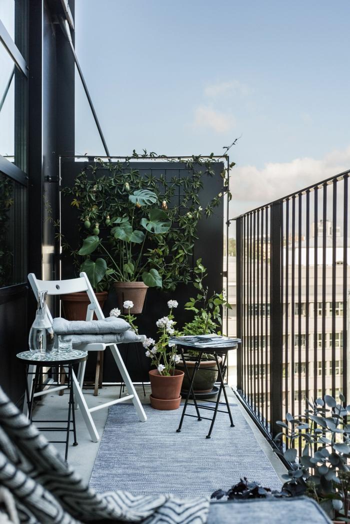schwarze Wand mit Kletterpflanzen und Pflanzentöpfe, elegantes Design und Einrichtung, Balkon gestalten Ideen,