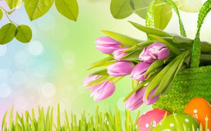 schöne ostern bilder, rosa tulpen im korb, frühlingsbilder frei, hübsche osterbilder