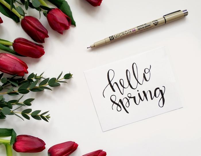 rote tulpen, frühlingskarte schreiben, hello spring, schöne ostern bilder, hallo frühling