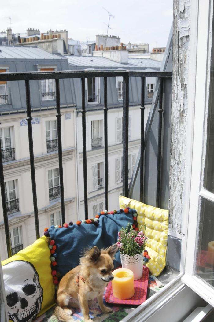 Süßer kleiner Hund auf einer Terrasse, Einrichtung mit vielen Kissen, Balkon Inspiration, pinkes Tablett mit Kerze und Blume