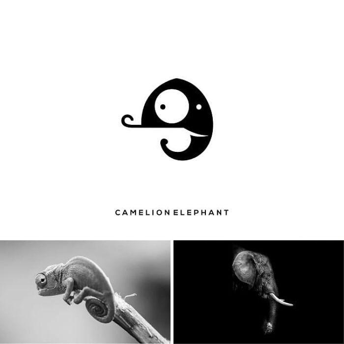 chamelionelephant, ein markenlogo von dem designer shibu pg, zwei schwarzweiße bilder mit einem elefant und chamäleon