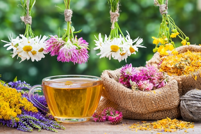 natürliche mittel zur stärkung des immunsystems, gesunder tee aus kräutern, heilmittel aus der natur