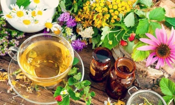 wie stärke ich mein immunsystem durch kräutern, gesunder tee zubereiten, gesundheitfördernde mittel