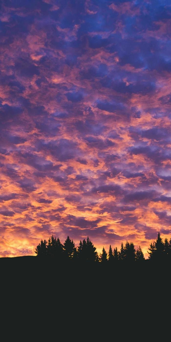 Magischer Sonnenuntergang im Wald, Aesthetic Phone Wallpapers, Wolken in Lila und Gelb