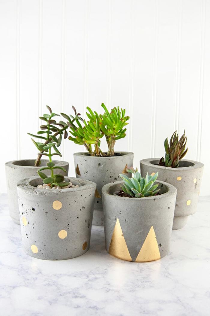 Sukkulenten mit Kakteen und grünen Pflanzen, graue Pflanzenbehälter dekoriert mit goldener Farbe, Blumenkübel selber machen