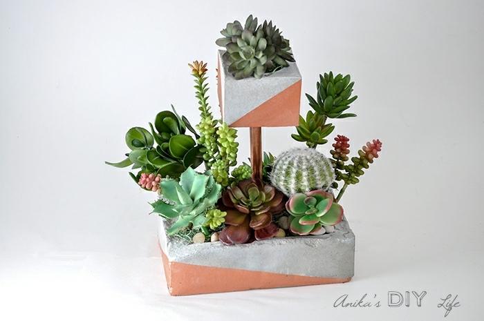 DIY Pflanzer mit vielen kleinen und großen Kakteen, pflanztröge aus beton selber machen