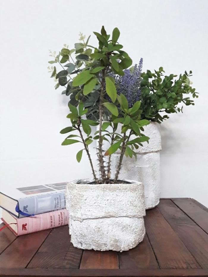 zwei große Bücher hinter einem Pflanzbehälter, Blumentopf aus Beton und Handtuch, grüne Pflanzen