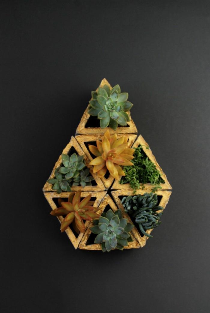 schwarze Wand, Komposition aus vielen Pflanzengefäße mit Kakteen, Pflanztröge aus Beton selber machen