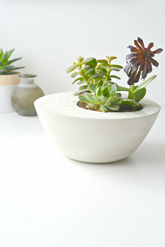 minimalistischer weißer Pflanzenbehälter mit grüner Pflanze drinnen, Pflanzkübel Beton selber machen