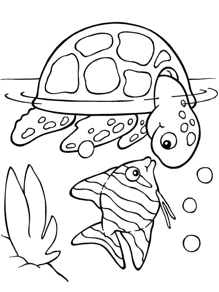 ein kleiner Fisch und eine Schildkröte unterhalten sich im Wasser, schöne Bilder zum nachmalen