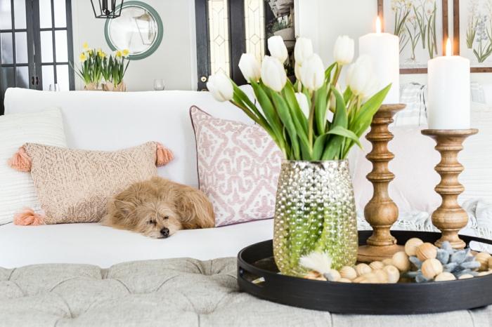 Inneneinrichtung Wohnzimmer, schöne weiße Tulpen, Hund liegt auf einem weißen Couch, Frühlingsdeko 2020