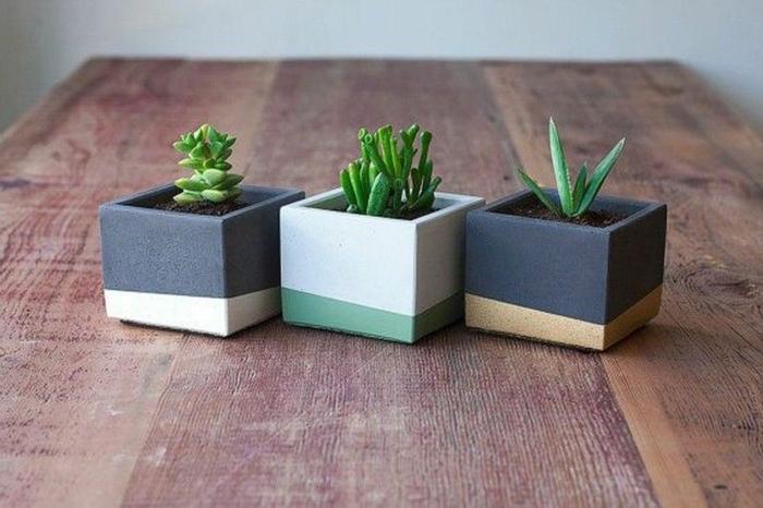 drei schlichte und kleine Blumentöpfe auf einem großen Holztisch, Blumenkübel selber bauen Beton,