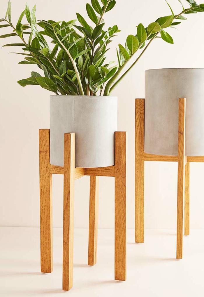 zwei Pflanzenhalter auf Stützen aus Holz, große grüne Pflanze, schöne Übertöpfe für drinnen