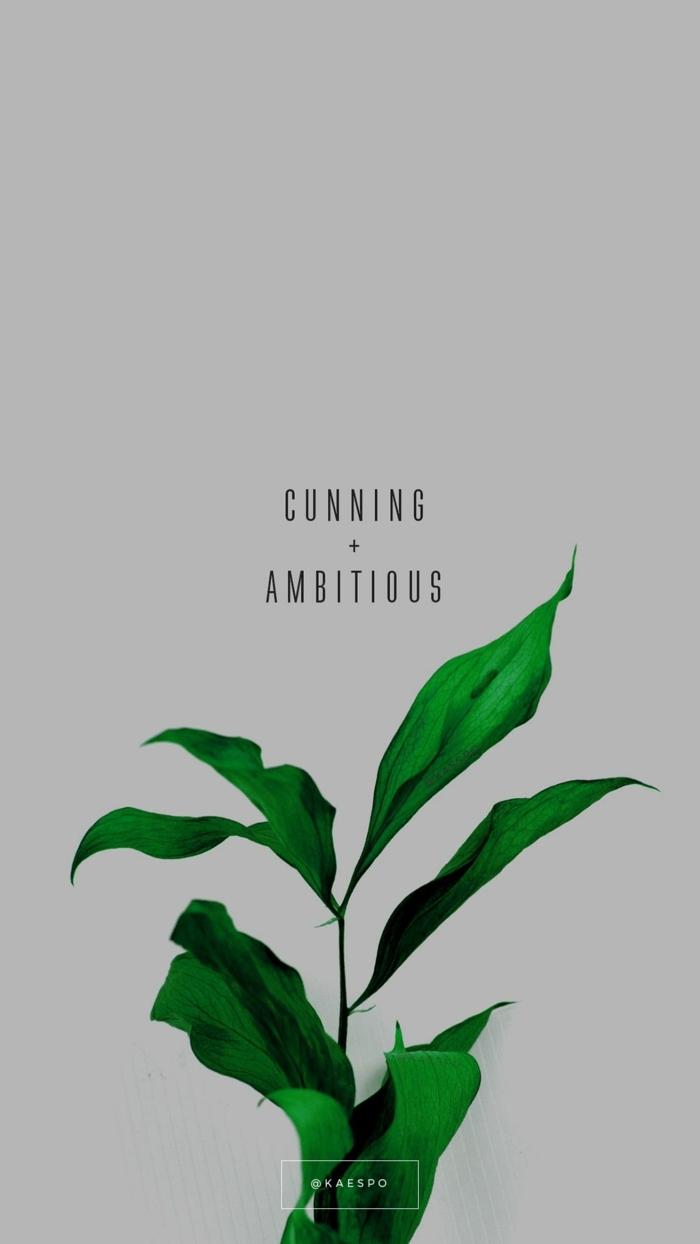 ästhetische Tapete, Bild von einer grünen Blume mit inspirierendem Spruch, aesthetic iphone wallpaper, cunning and ambitious