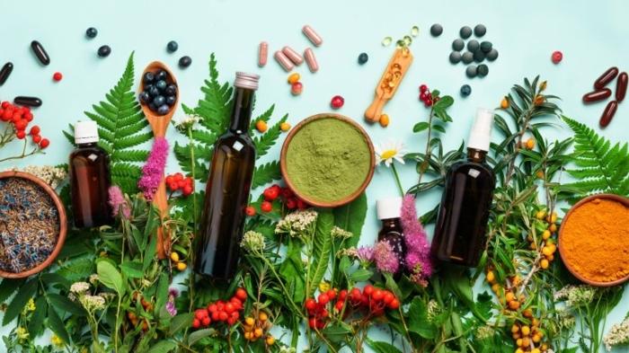 immunsystem aufbauen druch natürliche mittel, naturmittel zur immunsystemstärkung, kräuter