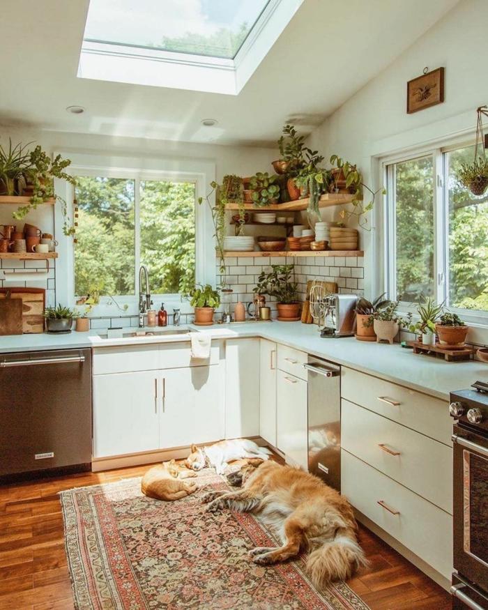 Dekoration mit vielen grünen Pflanzen, Küche l Form mit Fenster, weiße Küchenschränke, Hund und zwei Katzen auf dem Boden