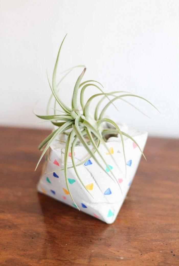 kleiner Pflanzer aus Beton mit einem kleinen Kaktus, dekoriert mit bunten Punkten, Blumenübertöpfe für Innen