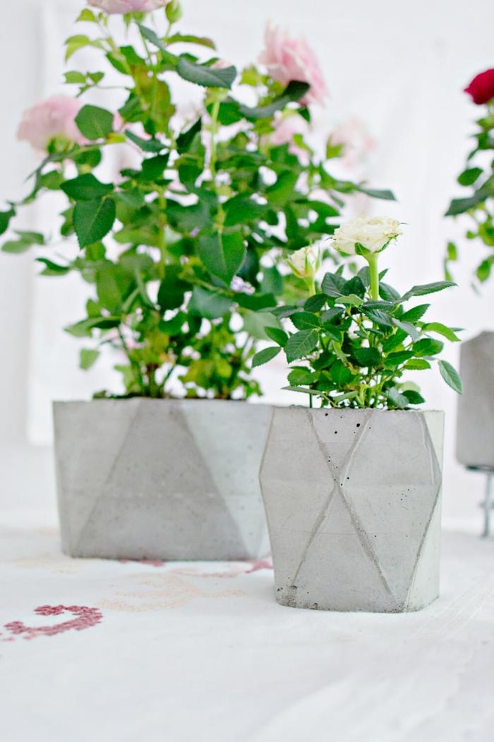 grüne Pflanzen mit rosa Bluten in Beton Blumentopf, Blumenkübel selber machen, DIY Ideen